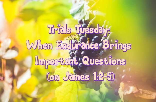 Trial Tuesday - Endurance 11.10.15