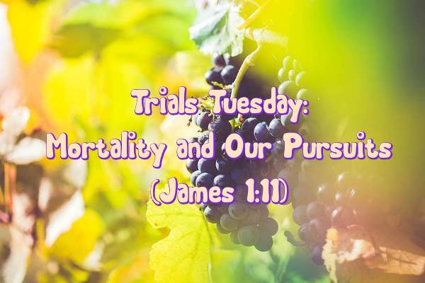 Trials Tuesday 2.9.16
