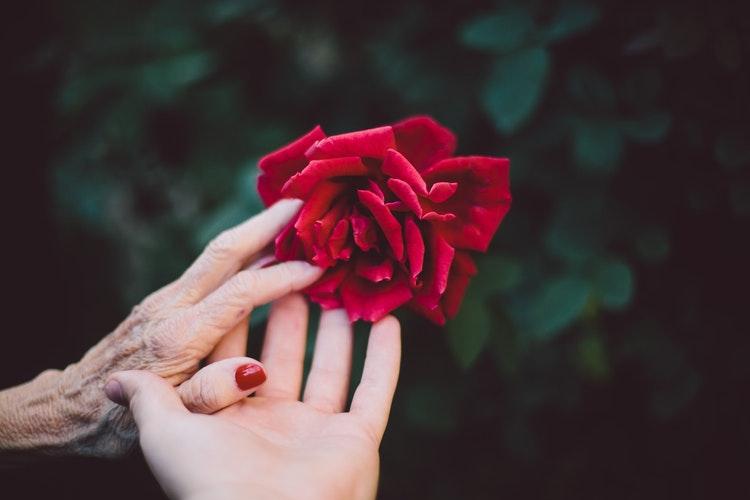 Leaving an Intentional Legacy {InspiringWomen}